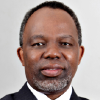 Delani Mtembu